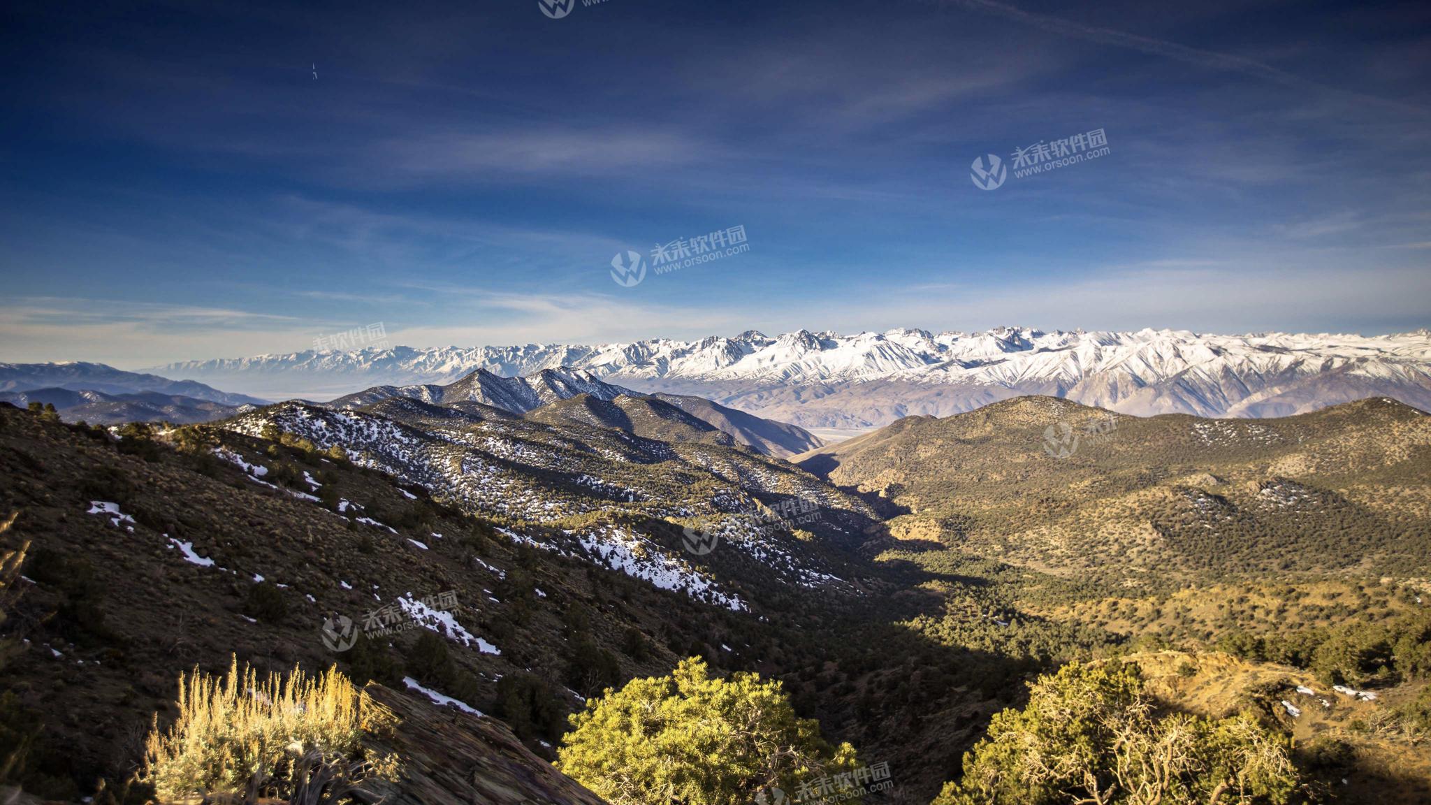 加州怀特山狐尾松古森林4K高清动态壁纸