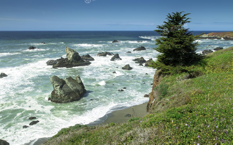 太平洋风景3k动态壁纸