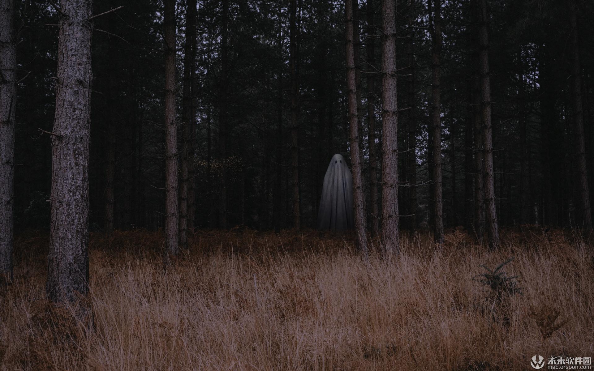 森林中的幽灵动态壁纸