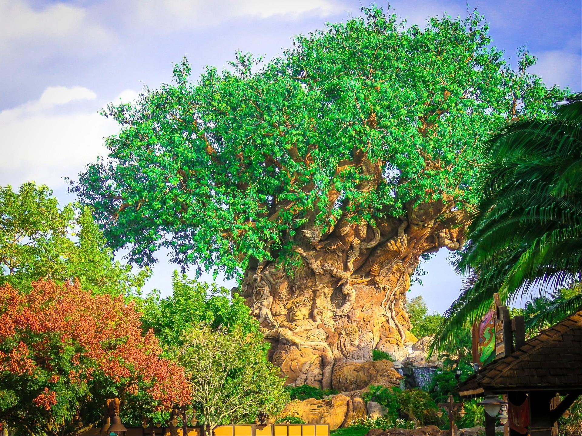 迪士尼游乐园Mac动态壁纸