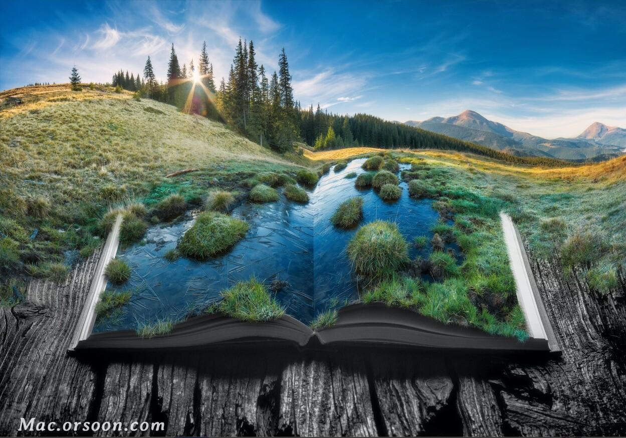 书上草原湿地高清壁纸
